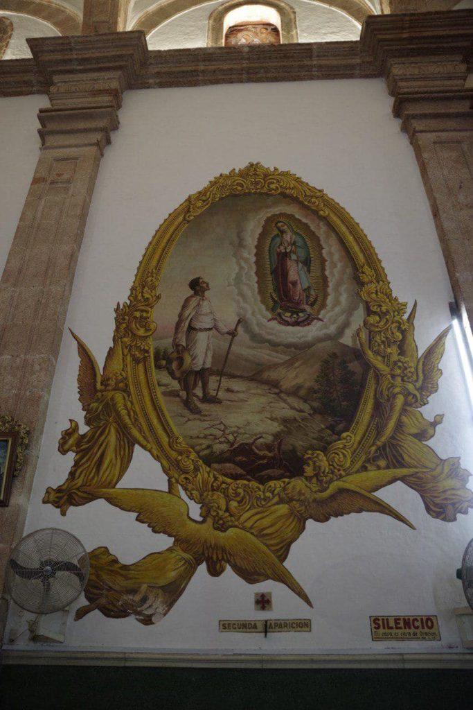 изображение канарская палка в Мексике