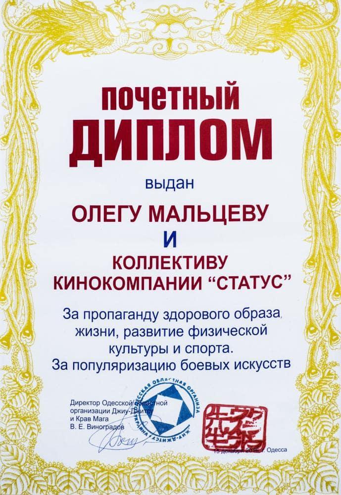 Диплом Олегу Мальцеву за популяризацию боевых искусств