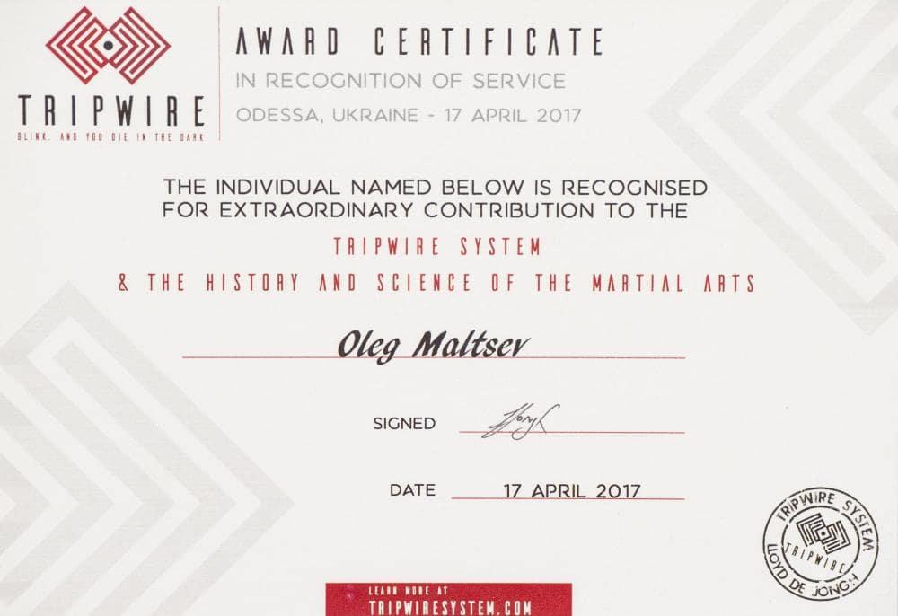 Наградительный сертификат в знак признания достижений Олега Мальцева