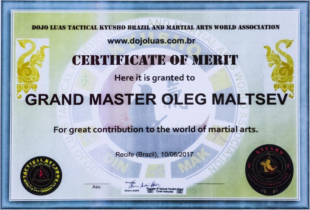 Мировая ассоциация DOJO LUAS тактических бразильских воинских искусств. Олег Мальцев